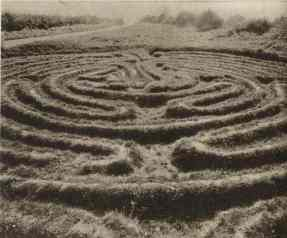 Old Wing Maze