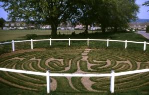 Wing_Maze