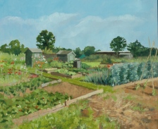 1142. Allotments. Wing (1)