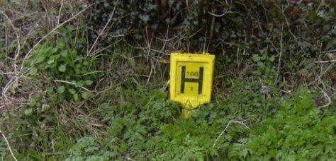 hydrant-sign-1470827855-herowidev4-0