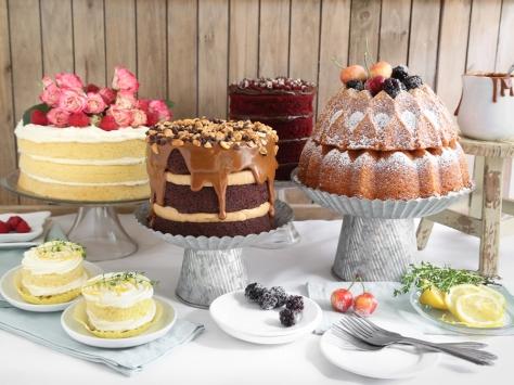 Sprinkle Bakes for Food Network Naked Cakes Gallery Opener